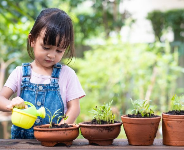Alt=Child growing plants as a metaphor for learning and development